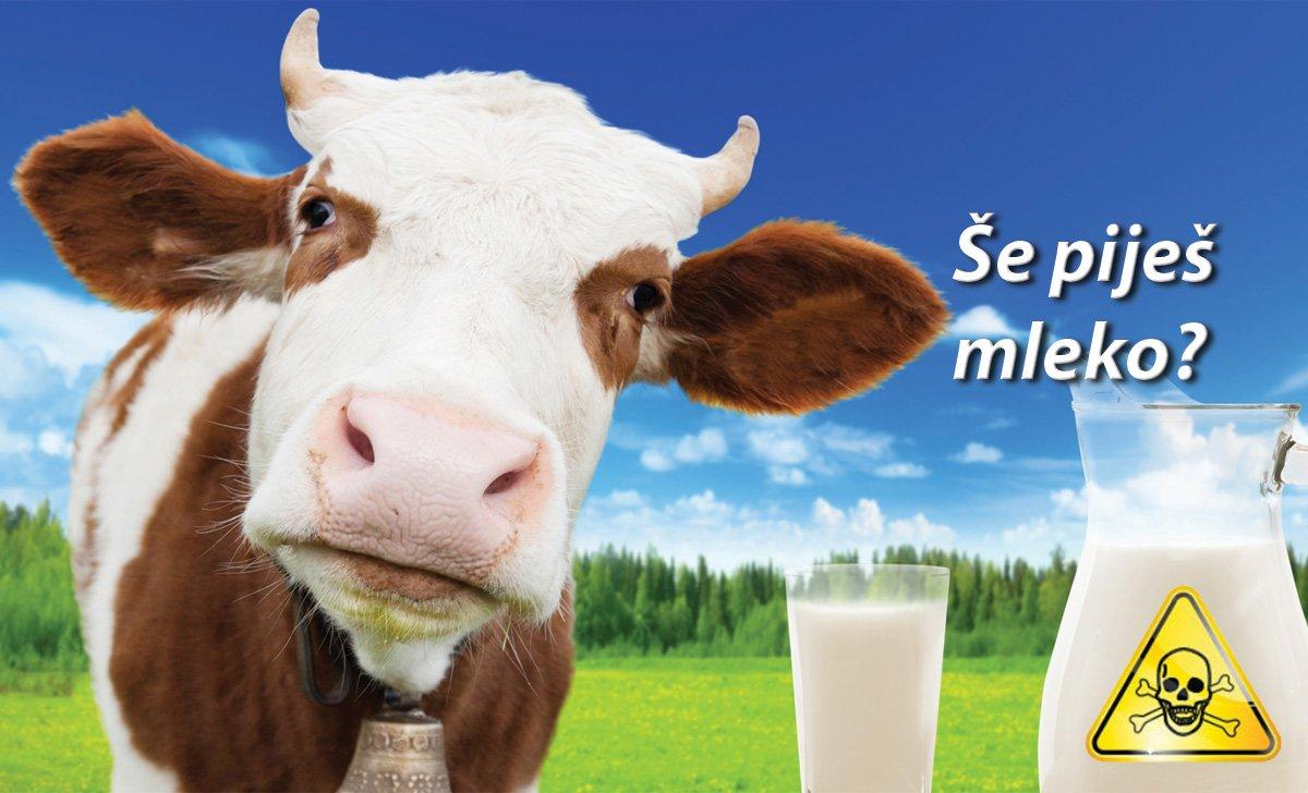 Krajve mleko