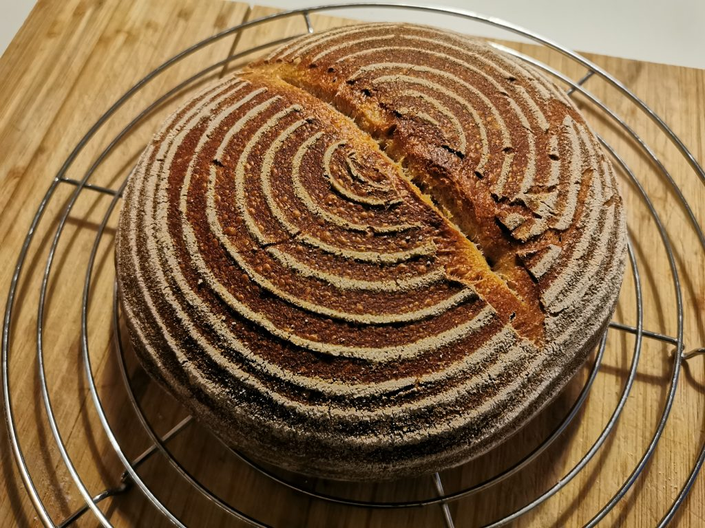 Kruh z droži na rešetkah