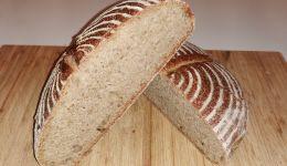 Kruh z droži